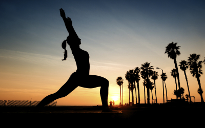 The Global Yoga Experience