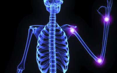 Anatomy in Yoga