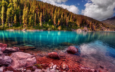 Fall Mindfulness Practices In Whistler